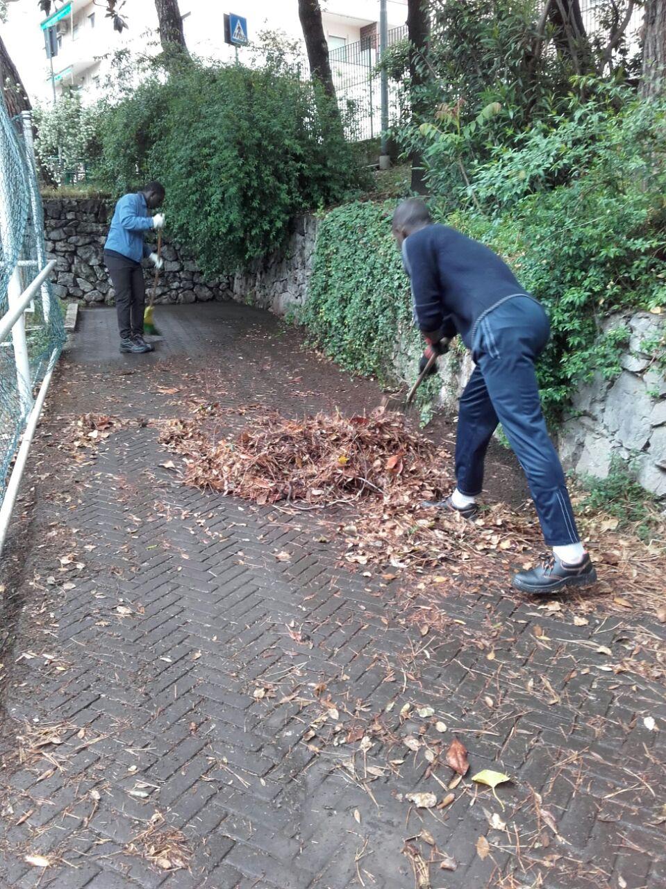 pulizia giardini genova