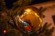 palla di Natale su ramo