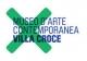 logo villa croce