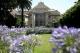 Palazzo Lomellino e il giardino con il glicine in fiore