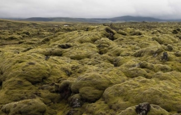 © Luca Gilli, Islanda 2009, N 2066