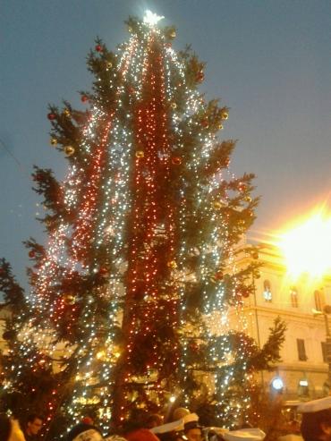 Albero Di Natale Grande.Comune Di Genova Acceso Il Grande Albero Di Natale In Piazza De