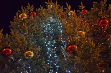 rami di abete con palline natalizie e luci a led
