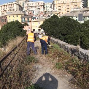 sfalcio vegetazione sul ponte