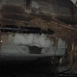 foto scattata dopo alluvione 2011