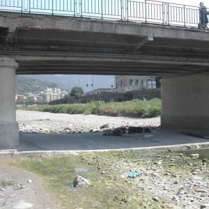 ponte Guglielmetti, pile in alveo