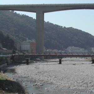 ponte Veronelli