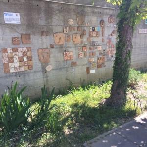Giardino scuola infanzia Mimosa