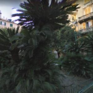 Cura dei giardini di piazza Montesanto e piazza Machiavelli