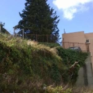 Scuola Fontanarossa